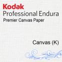 ENDURA PREMIER CANVAS 20,3CMX88M F (Brillant)